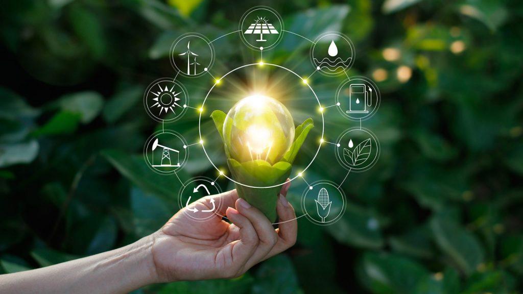 Bim et développement durable