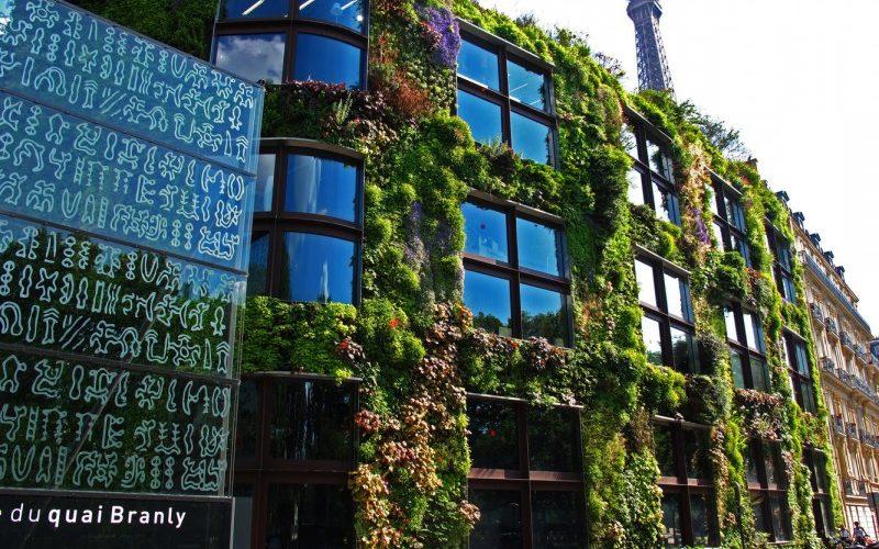mur végétalisé musée du Quai Branly