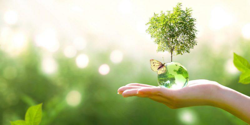 éco-friendly